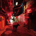 9mm Parabellum Bullet – Black Market Blues e.p [Mini Album]