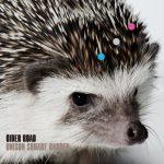 UNISON SQUARE GARDEN – CIDER ROAD [Album]