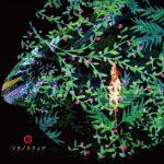 Akino Arai – Sora no Sphere [Album]