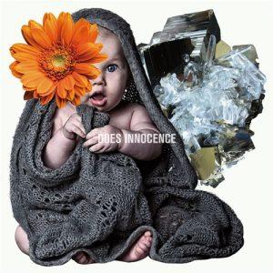 [Album] DOES – Innocence [MP3/320K/RAR][2016.04.27]