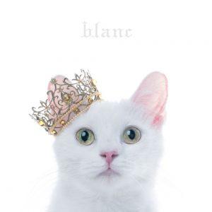 "[Album] Aimer – BEST SELECTION ""blanc"" [MP3/320K/ZIP][2017.05.03]"