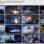 "[Concert] BUMP OF CHICKEN – GO from ""BUMP OF CHICKEN STADIUM TOUR 2016 ""BFLY"" NISSAN STADIUM"" [HDTV][720p][x264][AAC][2016.12.21]"