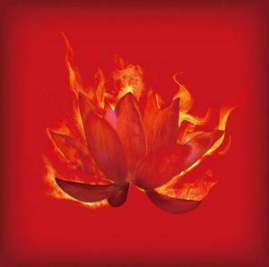 "[Single] DOES – Guren ""Naruto Shippuden"" 15th Opening Theme [MP3/320K/RAR][2014.07.02]"