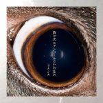[Mini Album] Yorushika – Makeinu ni Encore wa Iranai [FLAC/ZIP][2018.05.08]