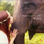 [Album] KOKIA – Where to go my love [MP3/320K/ZIP][2013.03.20]
