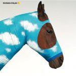 [Album] MONKEY MAJIK – Sora wa Maru de [MP3/192K/ZIP][2007.07.25]
