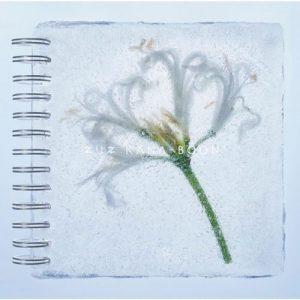 [Mini Album] KANA-BOON – Nerine [MP3/320K/ZIP][2018.01.25]