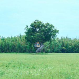 [Digital Single] Novelbright – Life Squall [MP3+FLAC/ZIP][2021.07.23]